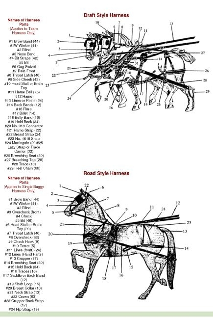 198 Best Horse Sleds, Wagons, Carts Images On Pinterest | Sleigh intended for Draft Horse Harness Parts Diagram