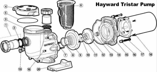 Hayward Tristar Inground Pool Pump – Give Your Pool Filter System pertaining to Hayward Pool Pump Parts Diagram