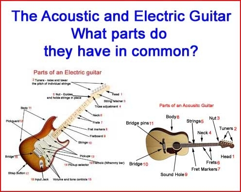 Parts Of A Guitar | Guitar Diagrams throughout Acoustic Electric Guitar Parts Diagram