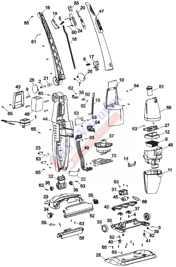 Shark Steam Mop Parts Diagram - The Largest Shark regarding Shark Steam Mop Parts Diagram