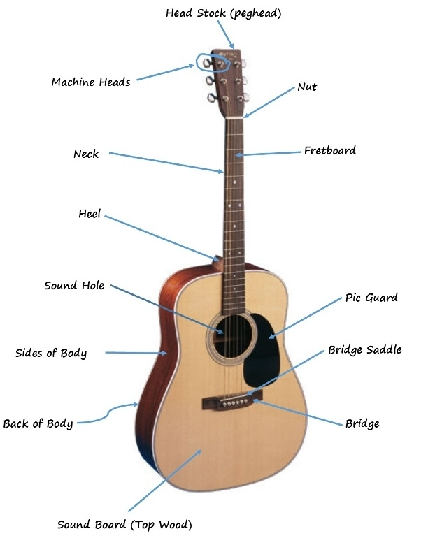 The Parts Of The Acoustic Guitar Diagram | Six String Acoustic within Acoustic Electric Guitar Parts Diagram