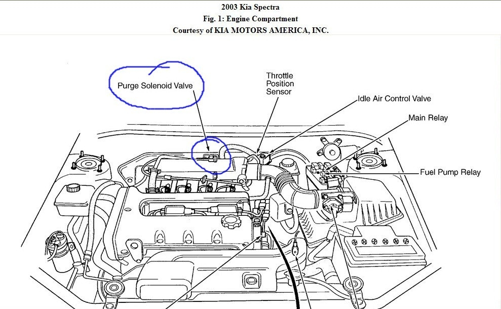 2003 Kia Spectra Engine Diagram