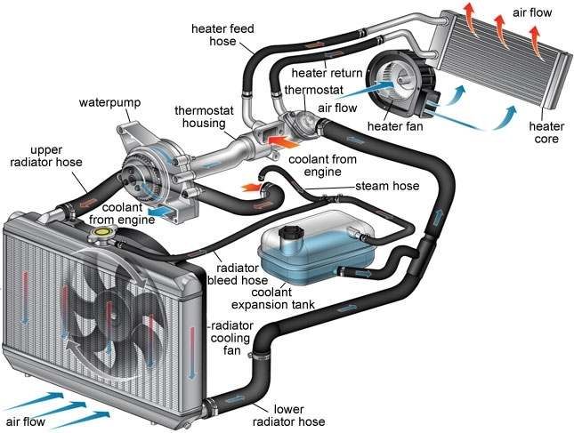 Cooling System Maintenance - Tire And Automotive Service In within Car Engine Cooling System Diagram