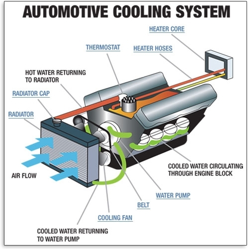 Cooling System - Understand Your Vehicle - Autozone with Car Engine Cooling System Diagram