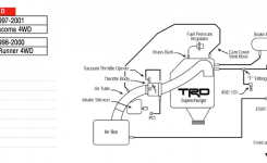 2001 Tacoma Parts Diagram 2001 Tacoma Parts Diagram • Wiring intended for 2001 Toyota Tacoma Parts Diagram