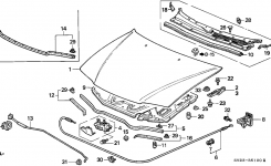 60100-Sv4-010Zz – Genuine Honda Hood, Engine inside 1997 Honda Accord Parts Diagram