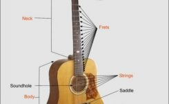 Acoustic Guitar Diagrams ^ * ^ Outside And Inside With Explanations in Acoustic Electric Guitar Parts Diagram