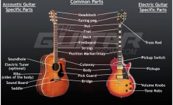 Guitar Anatomy – Theguitarlesson intended for Acoustic Electric Guitar Parts Diagram