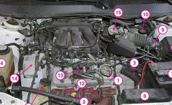 How-To Matthew: Under The Hood: 2001 Ford Taurus 3.0L throughout 2001 Ford Taurus Parts Diagram