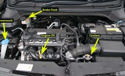 Hyundai I20 Show Me Tell Me Questions Labelled Diagram for Show Me Tell Me Engine Diagram