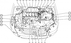 Position Of Parts In Engine Compartment – Toyota Corolla 2004 Wiring in 2001 Toyota Corolla Engine Diagram