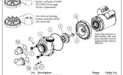 Sundance Spa Thermax/theraflo 2 Hp, 1 Speed, 240 Volt Motor/pump throughout Dimension One Spa Parts Diagram
