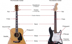 The Parts Of A Guitar | Magnolia Guitar for Acoustic Electric Guitar Parts Diagram